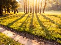 De warme, idealistische zonsondergang van de de zomermening Royalty-vrije Stock Foto's