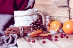 De warme winter met thee en mandarijnen royalty-vrije stock fotografie