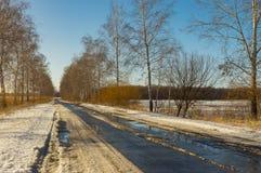 De warme winter op plattelandsgebied Royalty-vrije Stock Afbeeldingen