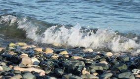 De was van de kustkiezelsteen stock videobeelden