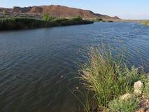 De Was van Las Vegas, Clark County Wetlands Park, Las Vegas, Nevada royalty-vrije stock afbeelding