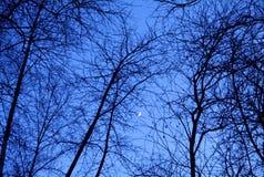 In de was zettende maan in de hemel Stock Fotografie