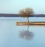 De wateren van Zen Stock Afbeeldingen