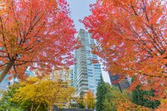 De Waterkant van Vancouver stock foto's