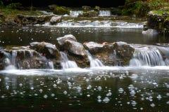 De waterlente in aard met een stroom en watervallen stock afbeeldingen
