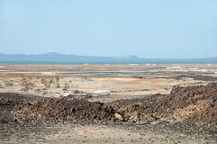 De waterless vidderna för sten av klyftadalen av Danakil och det blåa vattnet av den säsongsbetonade sjön, norr Etiopien Royaltyfri Bild