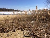 De waterlijn bij Sparren stelt Reservoir, Clinton, NJ in werking Stock Afbeelding