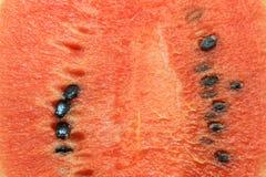 De watermeloen isoleert op witte achtergrond Stock Afbeeldingen