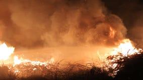 De waterstraal dooft reusachtige brand bij nacht stock videobeelden