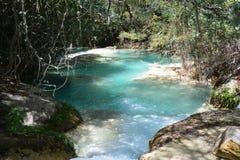 De Waterval Chiapas Mexico van Gr Chiflon stock foto's