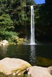 De Waterval Chiapas Mexico van Misolha royalty-vrije stock foto's
