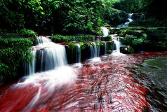 De Waterval Chishui van Guizhou Royalty-vrije Stock Foto