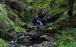 De waterval en de stroom van Fairytale Stock Afbeelding