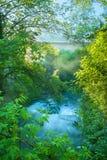 De waterval in het bos Stock Afbeeldingen