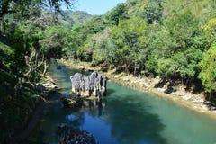 De Waterval Lanquin Guatemala van Semucchampey stock foto's