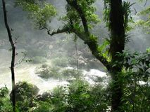 De waterval van Azul van Aqua in Mexico Royalty-vrije Stock Foto