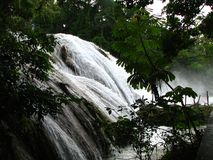 De waterval van Azul van Aqua in Mexico Royalty-vrije Stock Fotografie