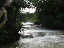 De waterval van Azul van Aqua in Mexico Stock Afbeeldingen