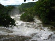 De waterval van Azul van Aqua in Mexico Royalty-vrije Stock Foto's