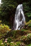 De Waterval van de Azoren Stock Foto