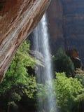 De Waterval van de Canion van Zion stock foto's