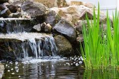 De waterval van de tuin Royalty-vrije Stock Foto's