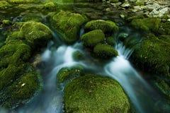 De waterval van de zomer in uiterst kleine rivier Royalty-vrije Stock Afbeelding