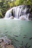 De Waterval van Erawan in Kanchanaburi Stock Afbeeldingen