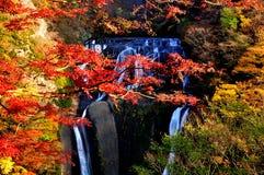 De Waterval van Fukuroda tijdens de Herfst stock fotografie