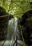 De Waterval van het bamboe stock afbeeldingen