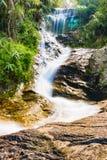 De Waterval van Huaykaew, Chiang-MAI, Thailand Stock Afbeeldingen