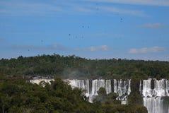 De Waterval van Iguazu Stock Foto's