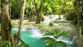 De Waterval van Kouangsi, Laos, Luang Prabang Struikgewas van tropische bomen stock video