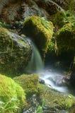 De waterval van Miniture Stock Fotografie