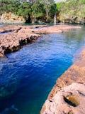 De Waterval van Nieuw Zeeland Stock Afbeeldingen