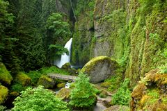 De waterval van Oregon royalty-vrije stock fotografie