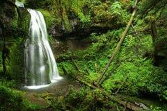 De waterval van Oregon Stock Fotografie