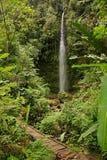 De Waterval van Pastaza in het Regenwoud van Amazonië - 2 Royalty-vrije Stock Foto's