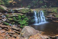 De Waterval van Pennsylvania Cayuga royalty-vrije stock fotografie