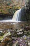 De waterval van Sgwdgwladus Op de rivier Afon Pyrddin Zuid-Wales, U Stock Afbeelding