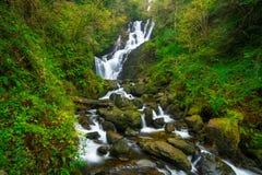 De waterval van Torc in Ierland Royalty-vrije Stock Fotografie