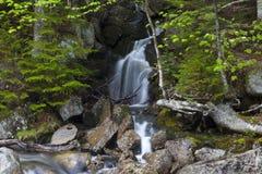 De waterval zet Washinton-gebied via Ammonoosuc-ravijnsleep op Stock Foto's