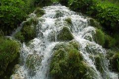 De watervallen van Plitvice. Mooie watervalstromen Royalty-vrije Stock Fotografie