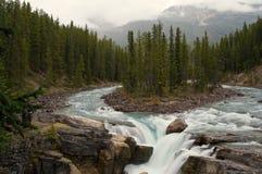 De watervallen van Sunwapta, ab, Canada stock foto's