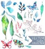 De waterverf bloeit inzameling voor verschillend ontwerp Stock Foto's