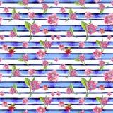 De waterverf die naadloos patroon trekken op het thema van de lente, vrouwelijke dag, de zomer, sakura bloeit tegen de achtergron royalty-vrije stock afbeeldingen