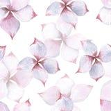 De waterverf naadloos patroon van Plumeriabloemen vector illustratie