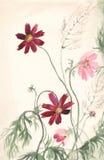 De waterverf van Cosmea het schilderen Royalty-vrije Stock Foto's