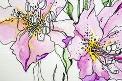 De waterverfbloem kleurt lilly textuur de groene bladwit geïsoleerde achtergrondacrylicsverf trekt royalty-vrije illustratie