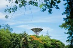 De Watervoorziening van de watertoren in bos Royalty-vrije Stock Foto